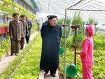 Ким Чен Ын осматривает теплицу в одной из частей Нароной армии.jpg