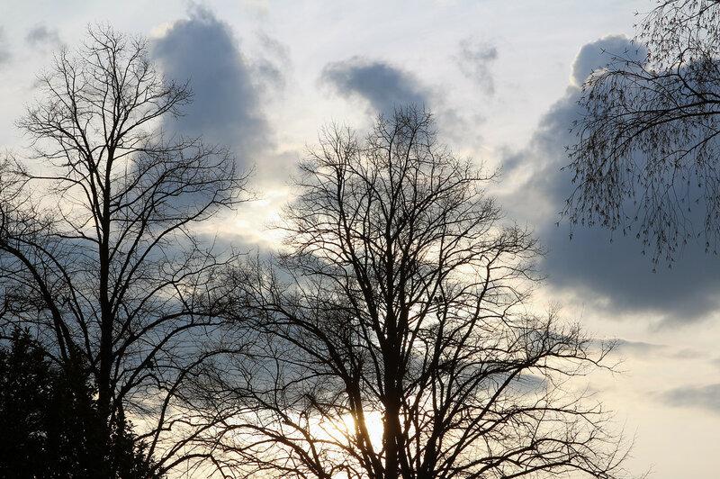 Весеннее небо, Тильбург