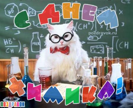 С Днем Химика! Белый ученый кот проводит опыты