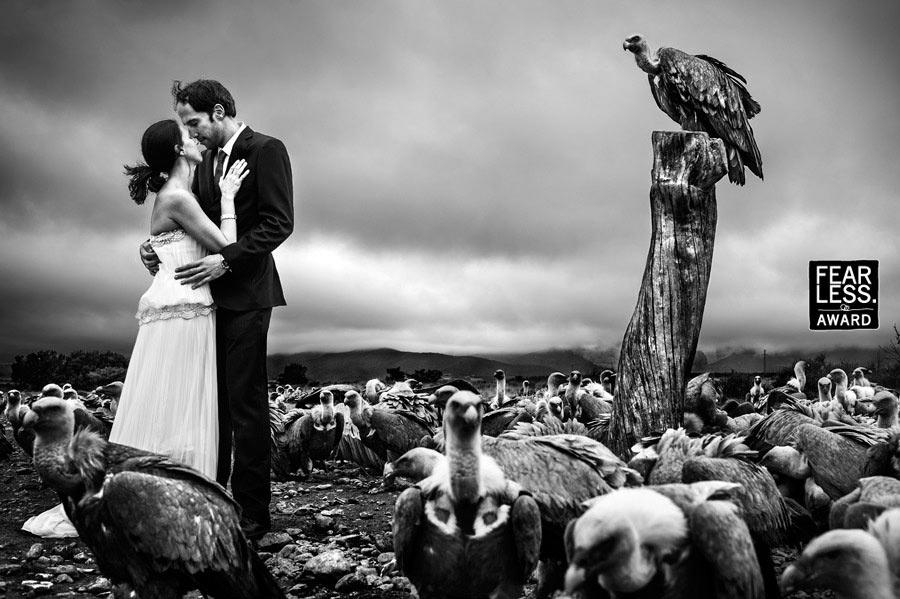Яркие и эмоциональные снимки от лучшего в мире свадебного фотографа (18 фото)