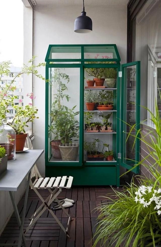 5. Если место позволяет — попробуйте устроить на балконе мини-теплицу. В период созревания помидоров