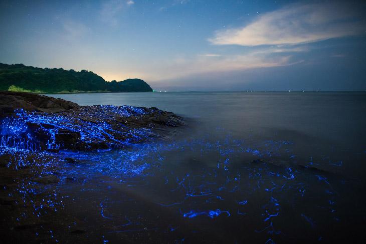 2. Снимки сделаны у берегов Окаяма, Япония. Чтобы создать такие «плачущие камни», фотографы собирали