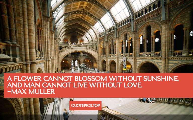 A flower cannot blossom without sunshine, and man cannot live without love. ~Max Muller