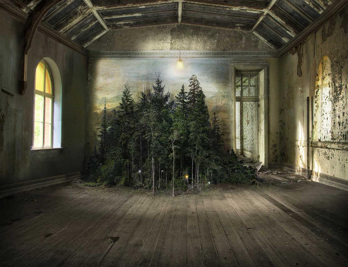 Quando a natureza invade lugares abandonados (10 pics)