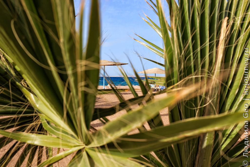 голден файв фото пляжа