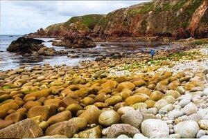 На Природе, в Северной Ирландии, фото из интернета (2).jpg