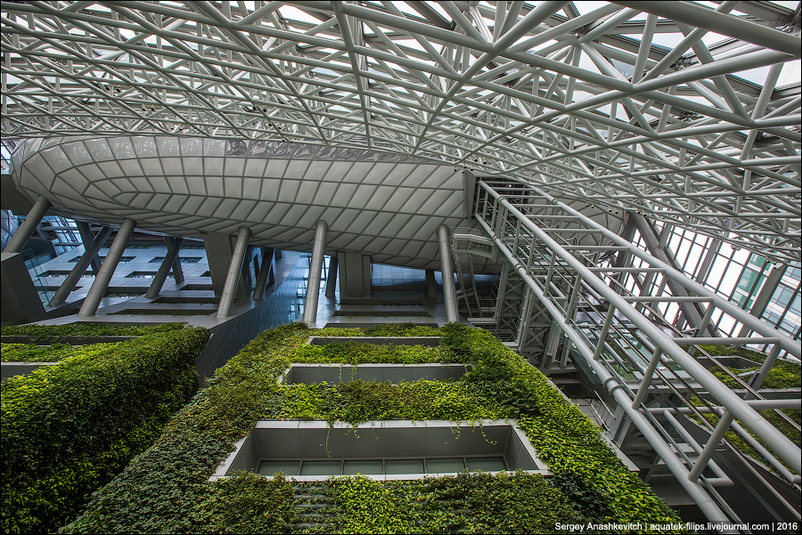 Мэри Сеула / Seoul City Hall