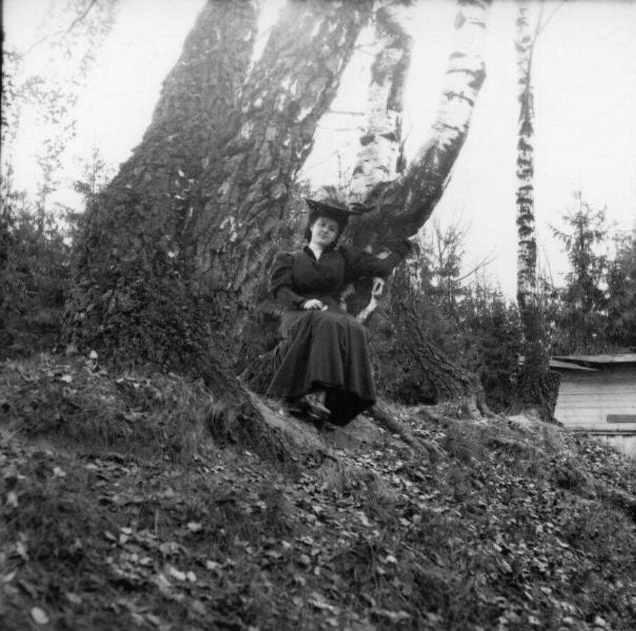 Прогулка в Петровский парк и Соломенную сторожку. «Густя среди двух берез»