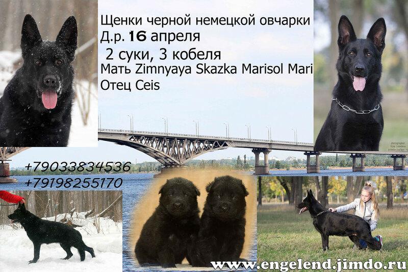 https://img-fotki.yandex.ru/get/5600/195910437.40/0_14a993_4c0c3d0b_XL.jpg