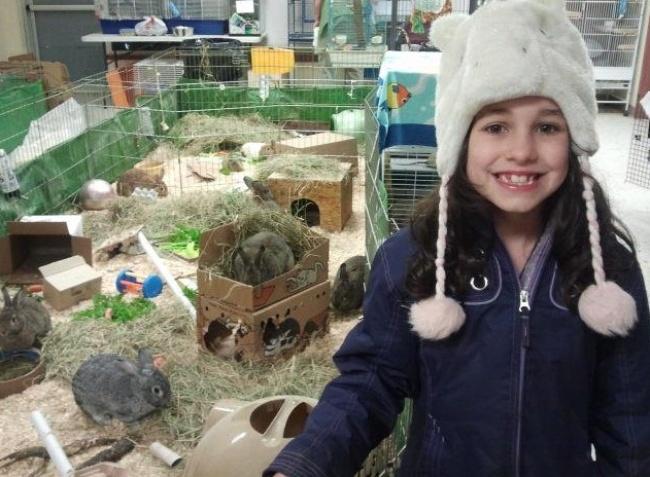 Маленькая Киана продала все свои игрушки, авырученные деньги пожертвовала местному приюту для живот