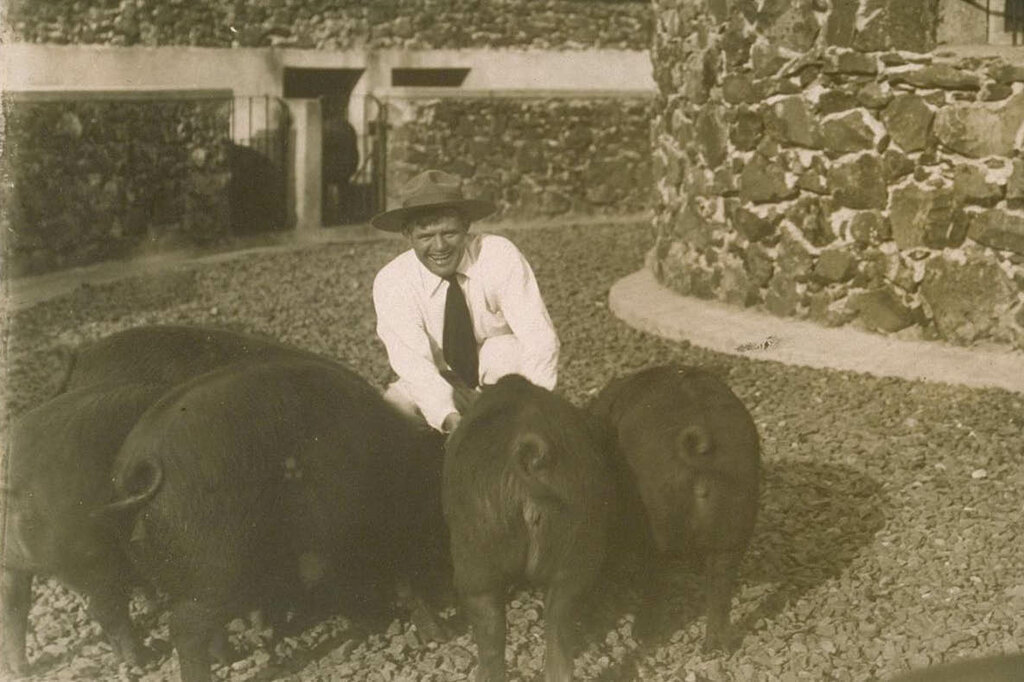 Jack London (1876-1916)