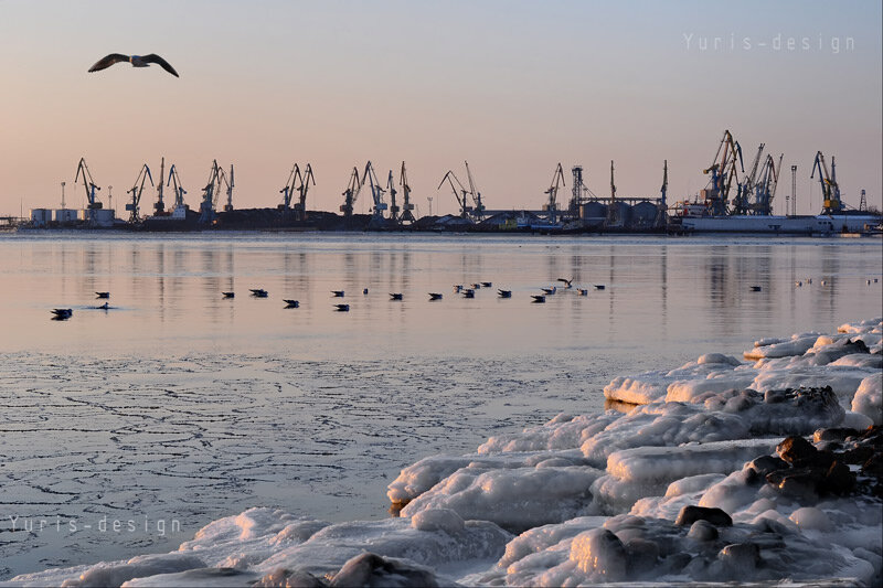 море Бердянск фото 2012