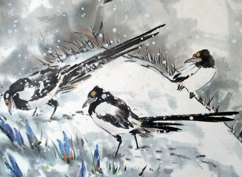2014 02 15 Сороки и крокусы в снегу (фрагмент).JPG