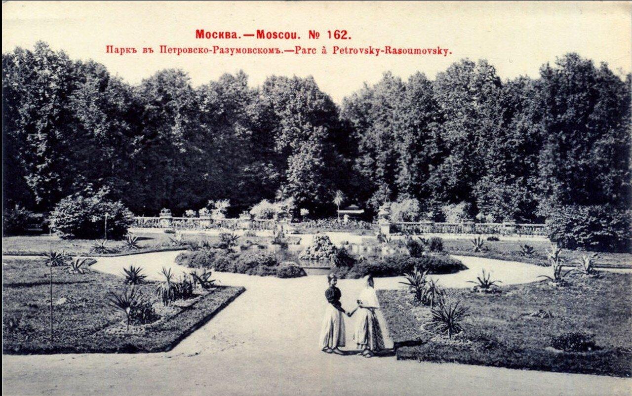 Окрестности Москвы. Петровско-Разумовское. Парк