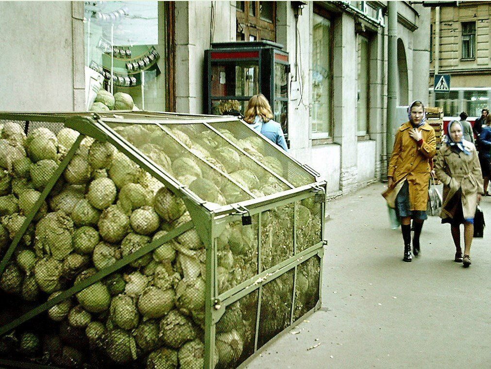 Резервуар для капусты