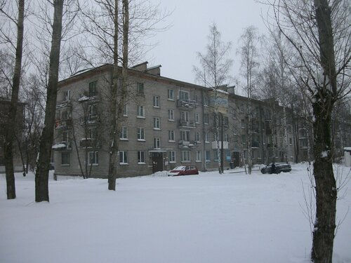 ул. Пограничника Гарькавого 22к2
