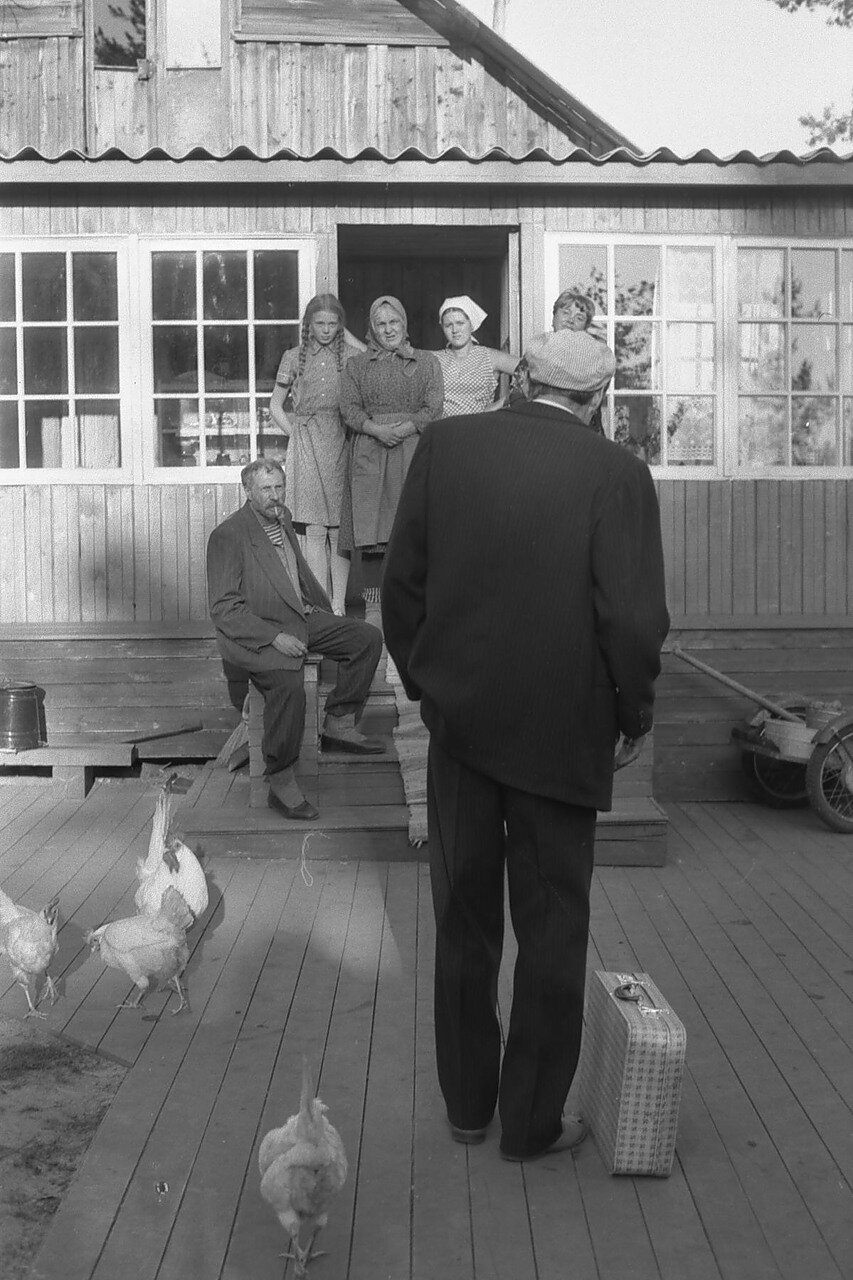 """Съём. пл. к/к """"Любовь и голуби"""" 1983 г."""