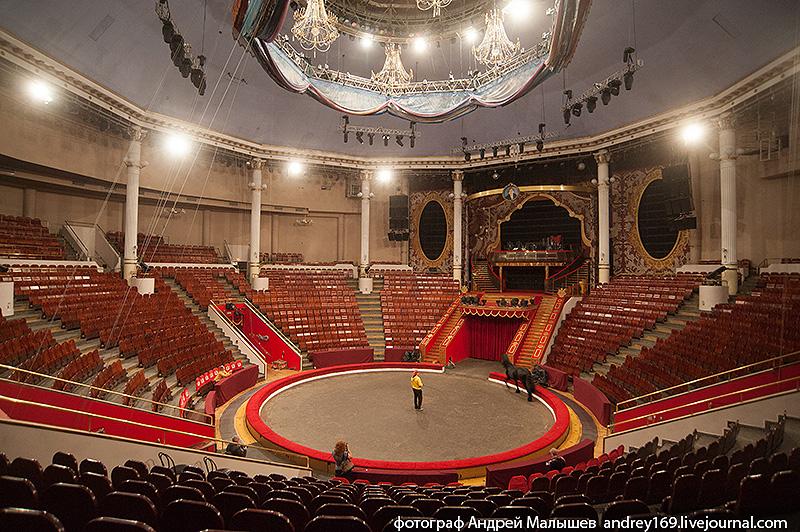 Цирк никулина фото зала с местами