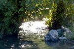 Водный канал