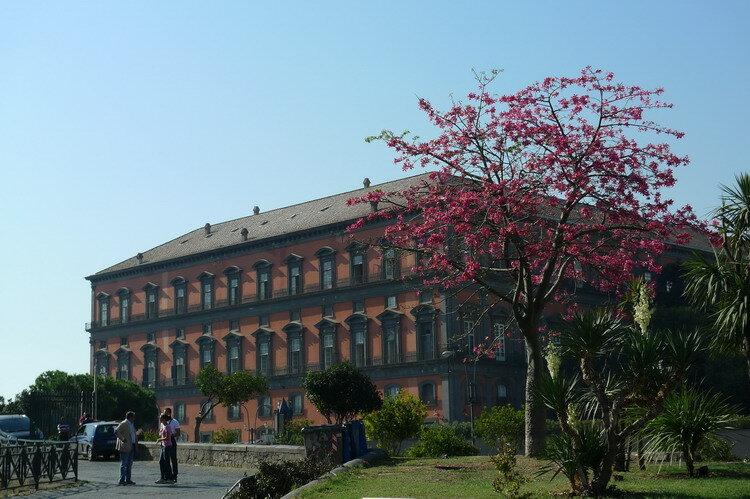 мы радостно распрощались и побежали в город Неаполь
