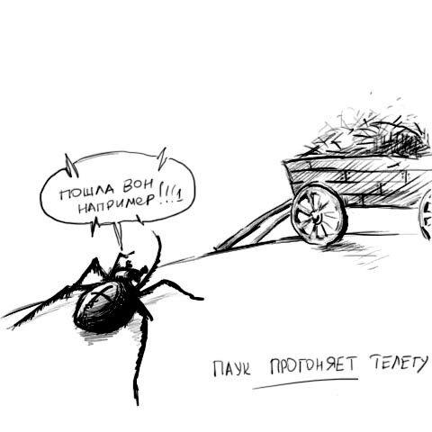 Паук прогоняет телегу