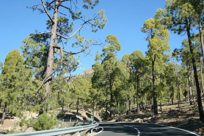 Тенерифе, дорога по Национальному парку Тейде
