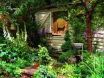☆  FavoriteChelsea Flower Show 2005By UGArdener