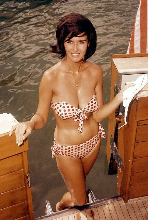 девочки Playboy.Sandra Settani, 1963