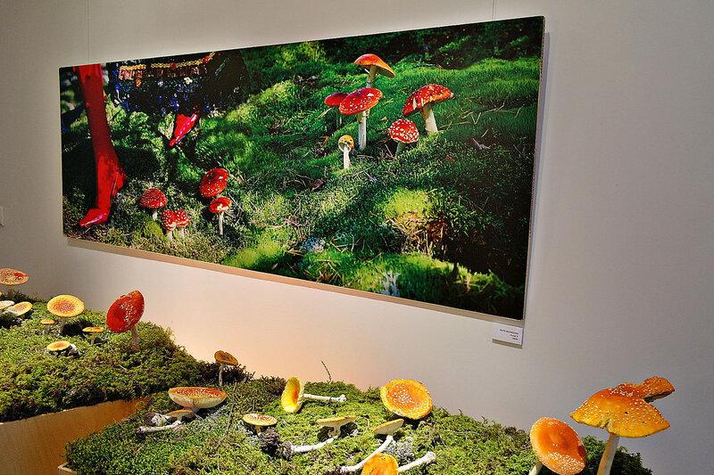 Экспонаты грибной выставки.