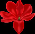 «p.s-iloveyou» 0_7d511_b560ca64_S