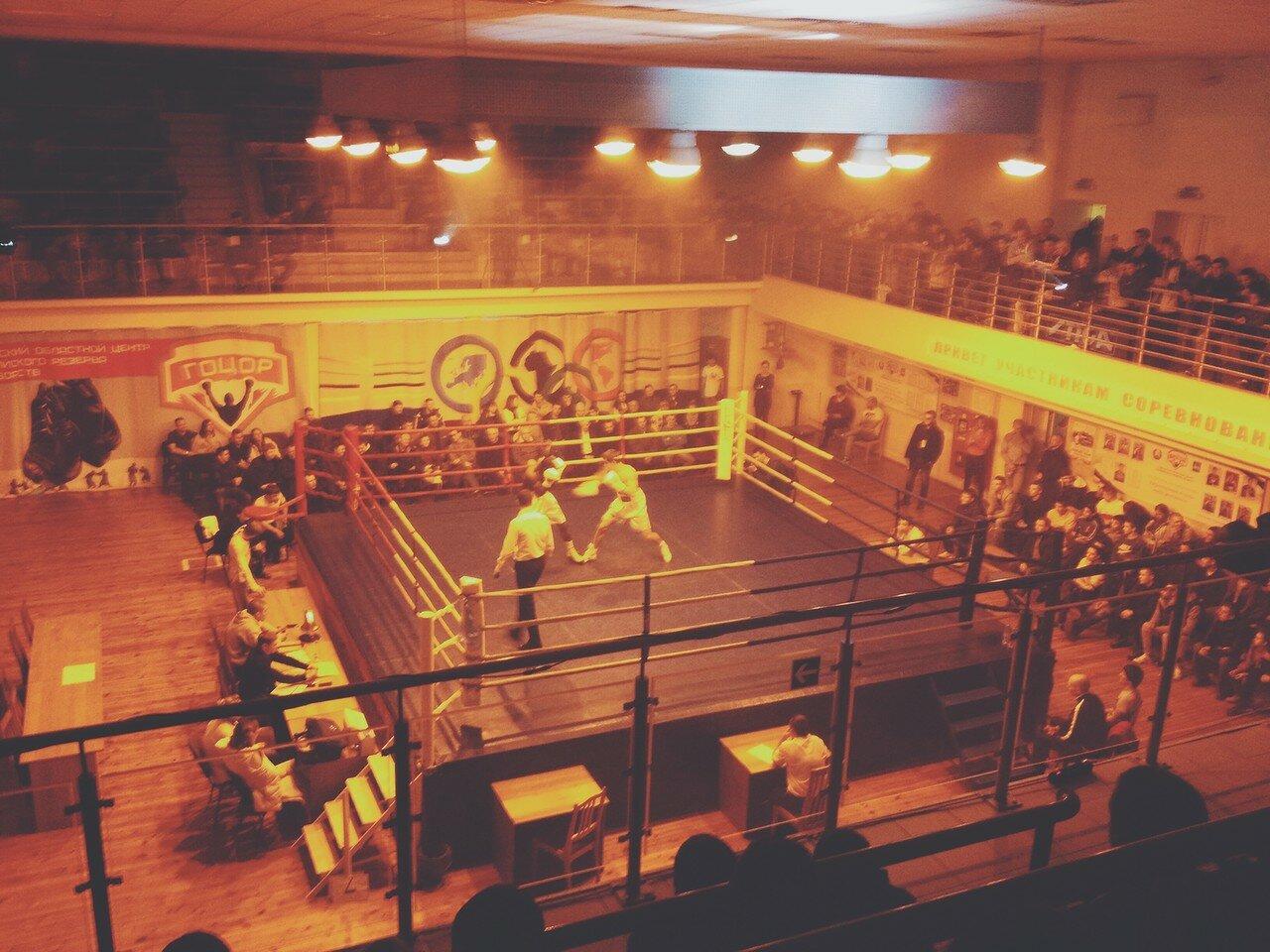 Дмитрий Милюша и Валере Эссомба Нгоно / Вечер профессионального бокса в Гомеле