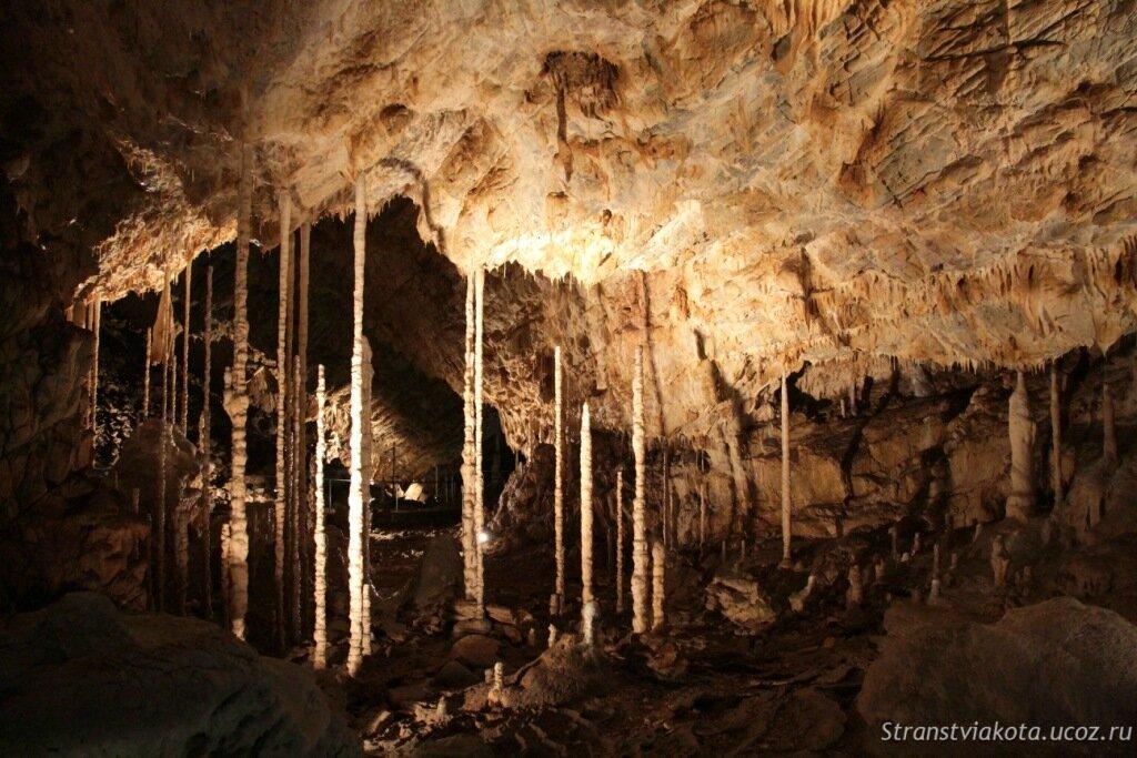 Чехия, Моравский Крас, Катеринская пещера