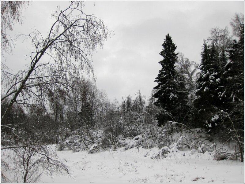 Зима на Малой Истре