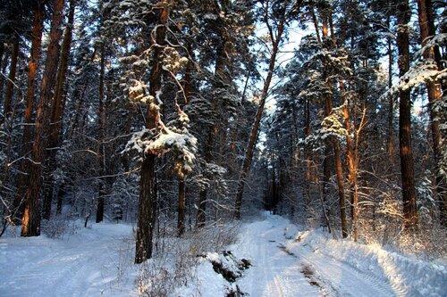 http://img-fotki.yandex.ru/get/5602/for-our-photos.5/0_42e56_f3f44f53_L.jpg