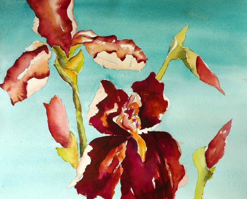 Carol-Carter: краски тропической флоры