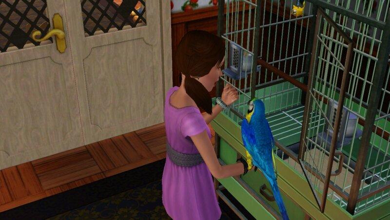 Скриншоты из The Sims 3 0_711cf_b01fe893_XL