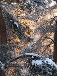 А из нашего окна сказка зимняя видна.