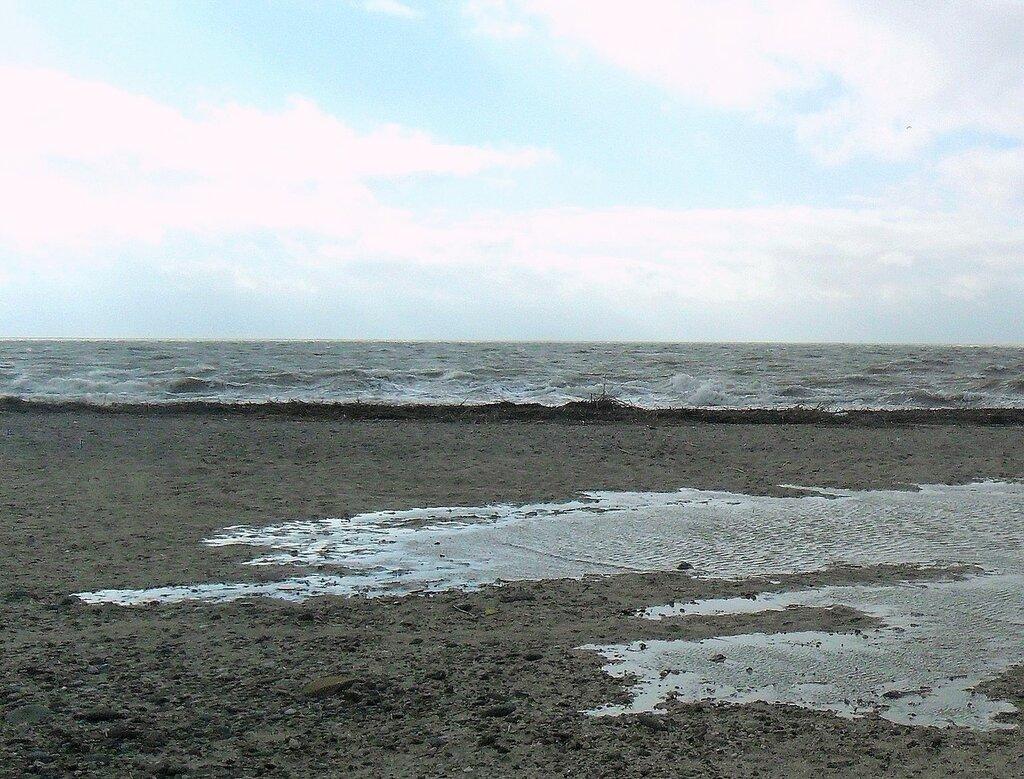 В погоду ветреную ... SAM_5721 - 1