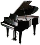 SD NP PIANO.png