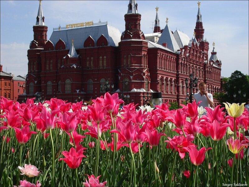http://img-fotki.yandex.ru/get/5603/sergey-2021.10/0_54463_802178eb_XL.jpg