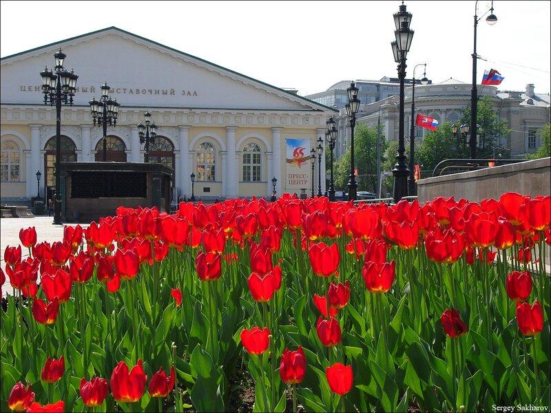 http://img-fotki.yandex.ru/get/5603/sergey-2021.10/0_54467_2ebb59e3_XL.jpg