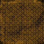 «DBV Gold Rush» 0_58b8c_fc4880c4_S