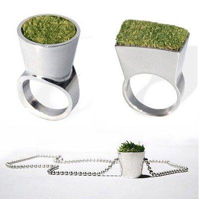растения украшения