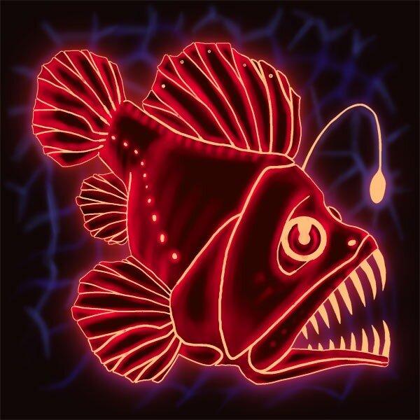 Рыба-удильщик, рыба-утюг