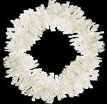blushbutter_frame_trim_circle2c.png