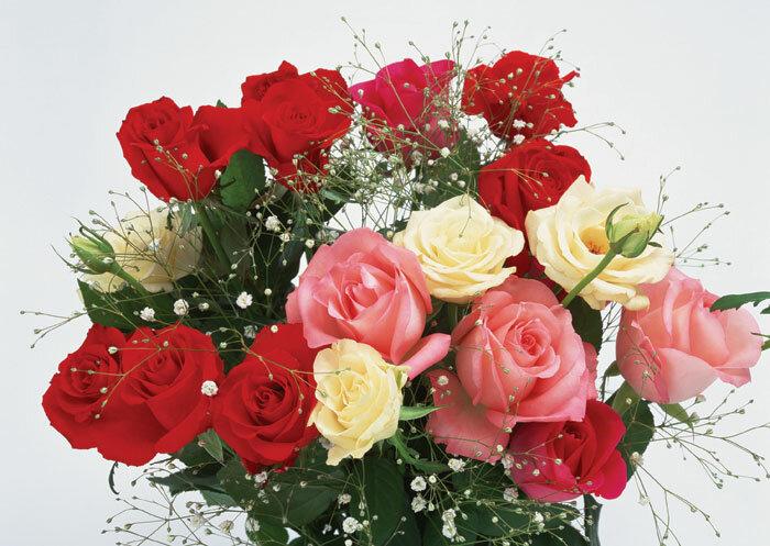 flowers040.jpg