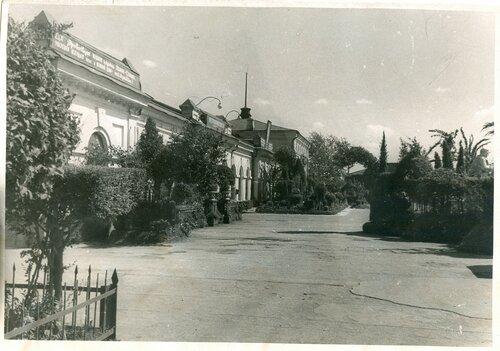 Декоративное озеленение перрона на ст. Петропавловск, 1952.jpg