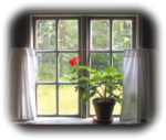 aclis_window_01_19_08_2011.png