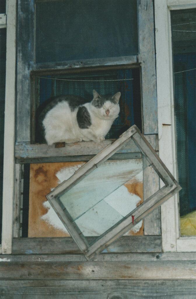 Solovki-2003_221.jpg