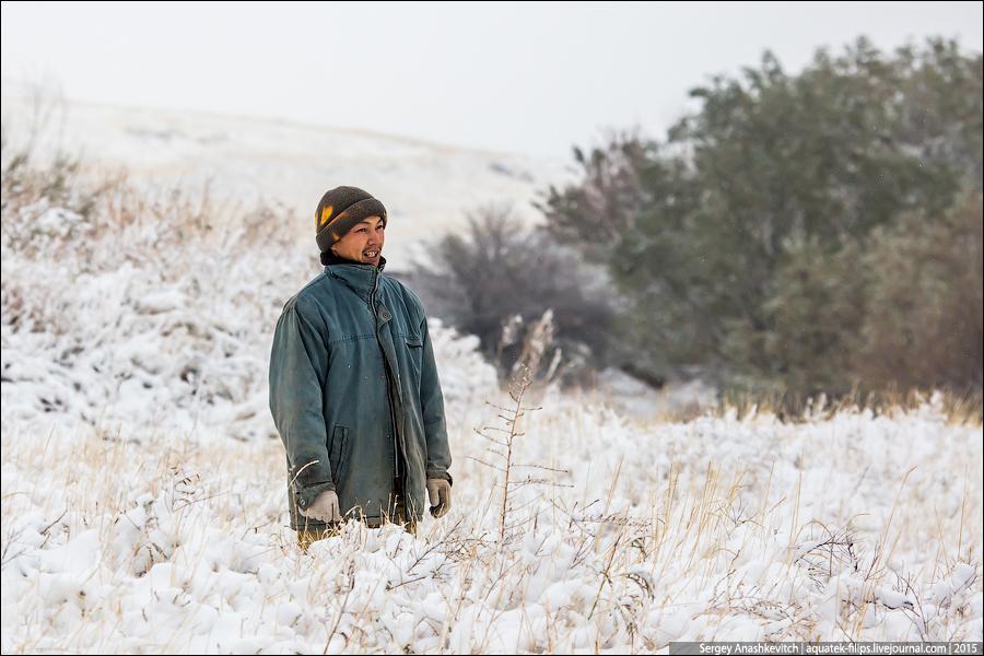 Неожиданная зима в южном Казахстане